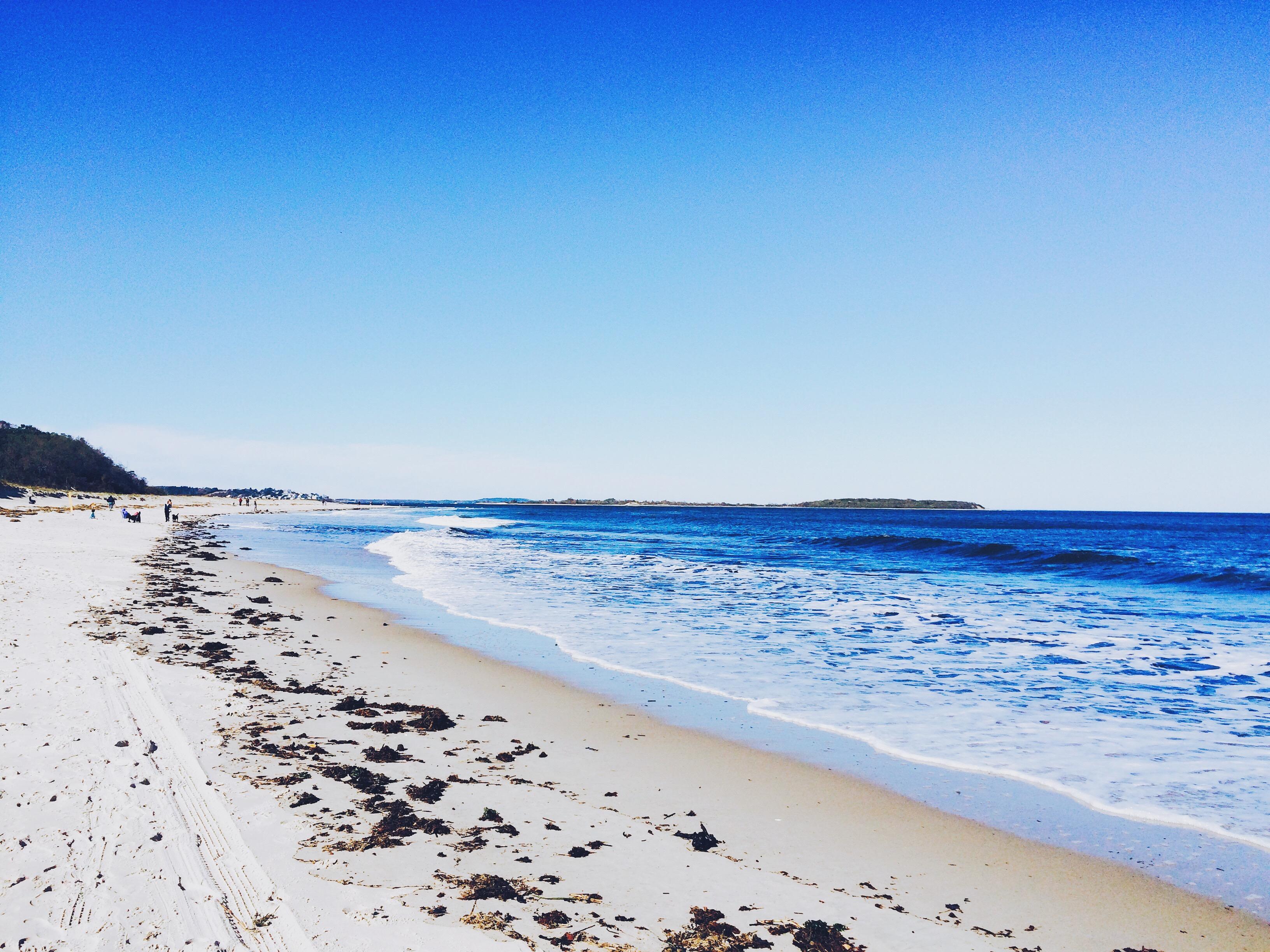 Aguas Residuales Contaminan Las Famosas Playas De La Riviera Maya