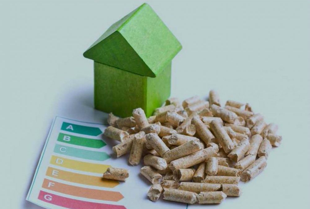 Los Tecnicismos Alrededor De Las Instalaciones De Biomasa